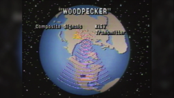 woodpacker3
