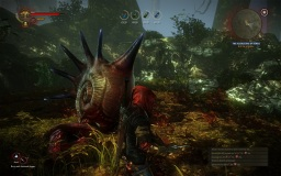 witcher 2 hermit-crab