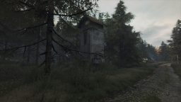 The Vanishing of Ethan Carter (4)