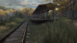 The Vanishing of Ethan Carter (5)
