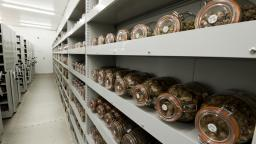 Seed vault at the Millennium Seed Bank