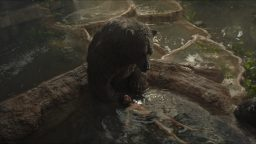 Mowgli_14823762_ver1.0_1280_720