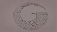 inner fish 8